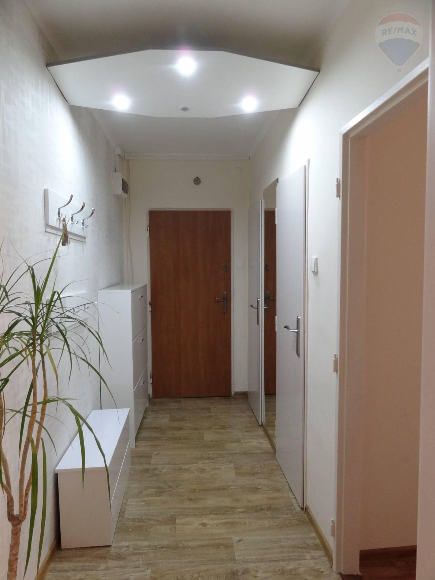 prenájom 1 izbový byt Nitra, Vikárska